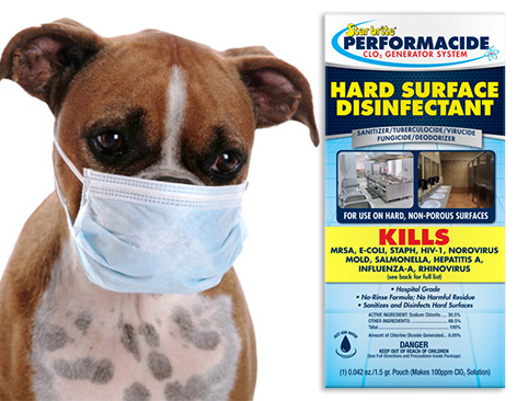 Stop The Spread of Dog Flu